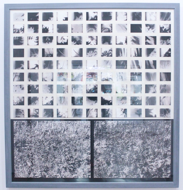 "Snow, Michael, ""Field"", 1973-74, 101 black and white photographs, mounted on cardboard, painted wood frame, 70 1/2 x 66 3/4 inches"